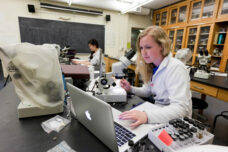 An ecology and evolutionary biology student works on a collection project of aquatic life at the Dana Building.