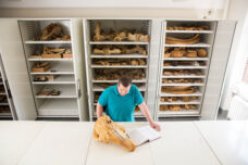 An assistant research scientist inspects a narwhal skull in the Museum of Zoology's mammals collection in the Alexander G. Ruthven Museums Building.