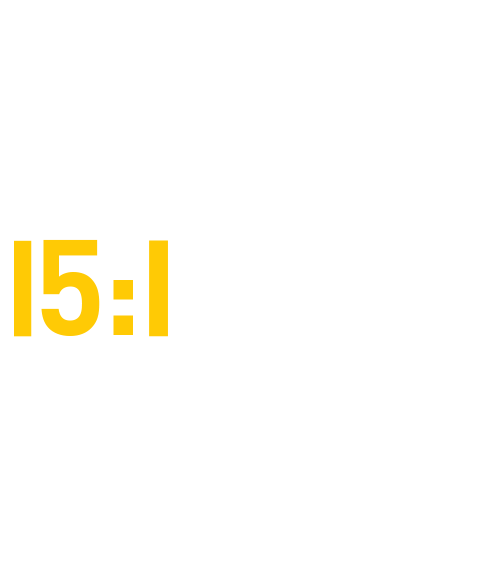 15:1 student to faculty ratio
