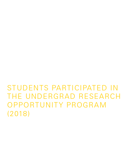1,400 students participated in the undergraduate research opportunity program — UROP (2017)