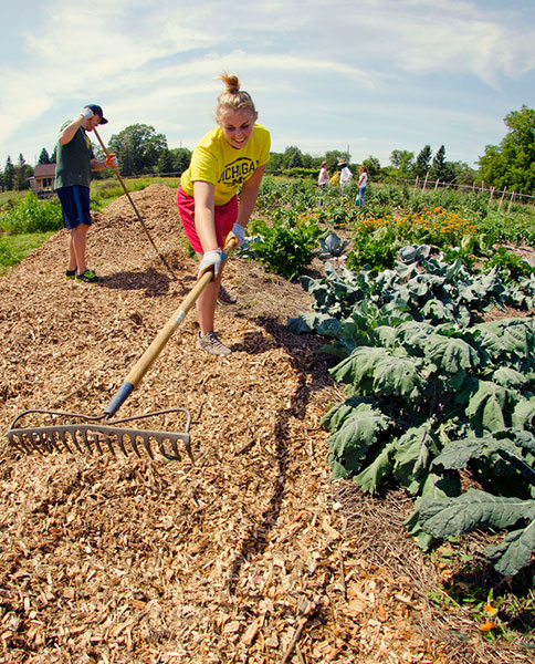 Student volunteers work on the Campus Farm at the U-M Matthaei Botanical Gardens
